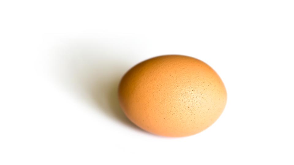 egg-1266606_960_720