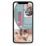 Katalog_phone_mockup